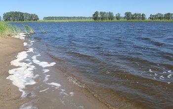 Пляж озера Щелочное Алтайский край, Завьяловский район